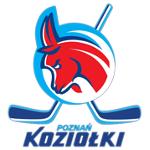 pth_koziolki_poznan